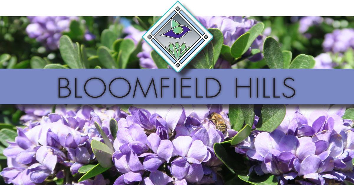 bloomfield hills pretty logo
